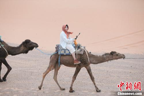 华晨宇骑骆驼