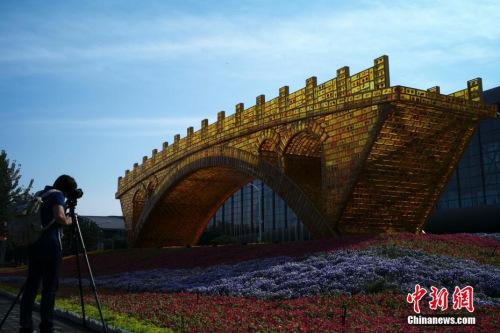 资料图:立体花坛。中新社记者 盛佳鹏 摄