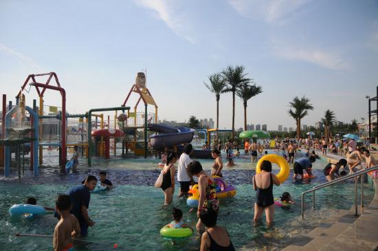 暑假来临,很多大人和孩子们都希望可以找一个地方消暑降温,此时,一年一度的北京海洋沙滩狂欢节 再度在朝阳公园拉开了帷幕。今年的海沙节将从6月28日持续至8月31日,近在身边的阳光、沙滩、碧水、萌物,还有异彩纷呈的各类活动,必定能给大家将带来激爽的一夏。   新萌物袋鼠抢滩海沙 海狮表演奇趣无穷   本届海沙节带来了一种新的萌物,它们憨态可居,结实的双腿使它们获得跳高健将和跳远能手的美称。更奇妙的是,它们腹前长有一个如同口袋一样的装备,那就是来自澳洲大草原上的特殊观赏动物袋鼠