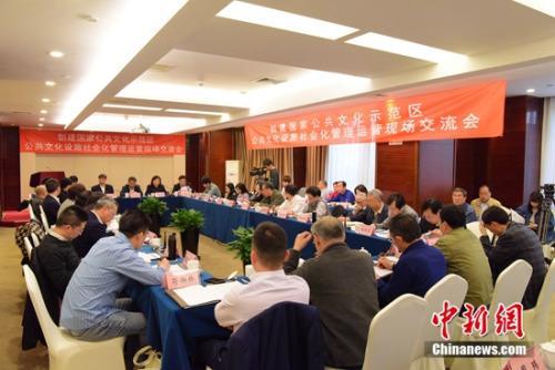 北京海淀公共文化设施社会化管理运营获专家点赞