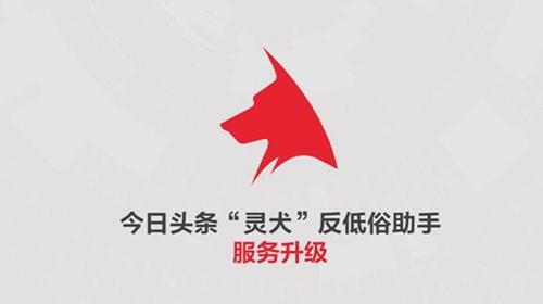 """今日头条升级""""灵犬""""服务超60万人次打击低俗"""