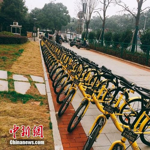"""共享单车进入城市攻防战ofo上海试点""""免押金"""""""