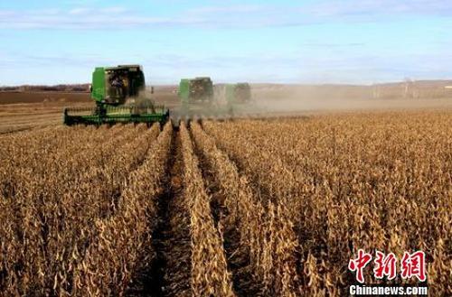 农业农村部种植业管理司司长:预