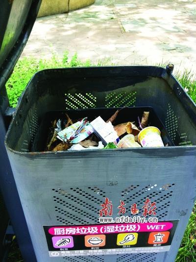 厨房垃圾桶里被错误地扔进了塑料瓶