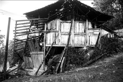 新农村夯土住宅设计图