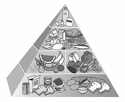 健康饮食计划推荐的膳食金字塔
