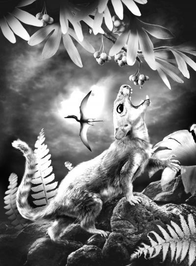 中国发现迄今最原始带毛发哺乳动物(图)