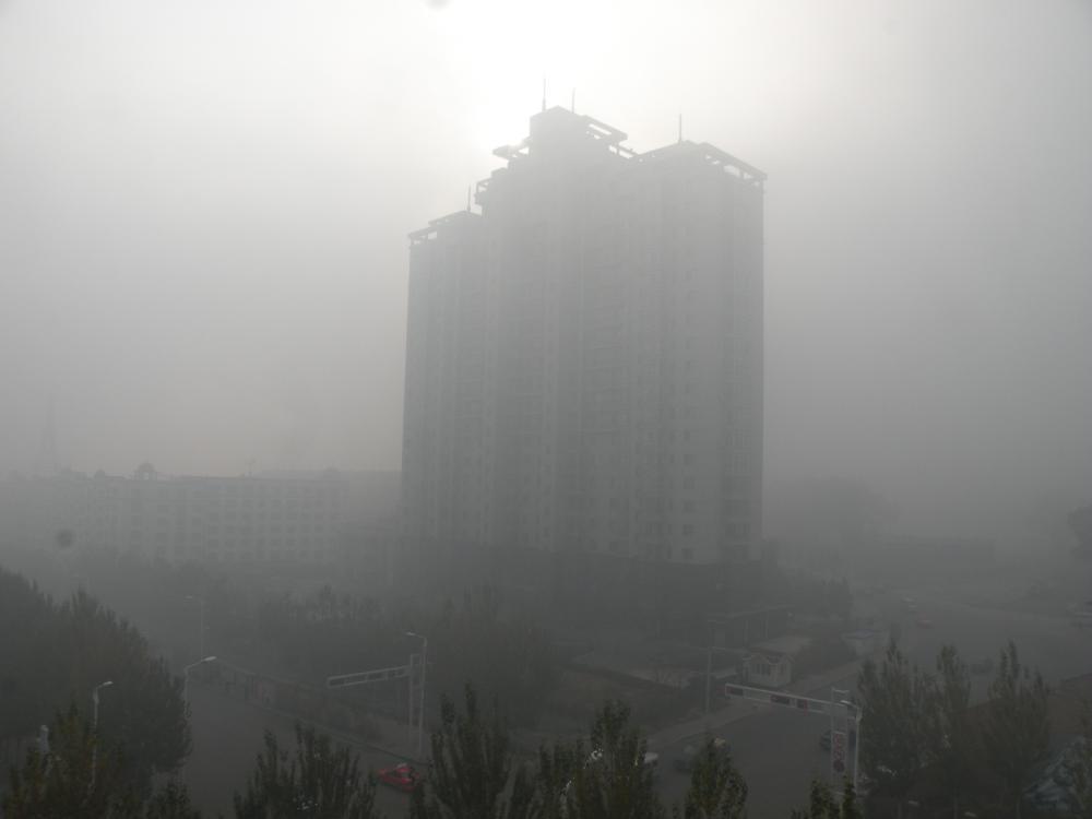 黑龙江省多地市出现雾霾天气(组图)
