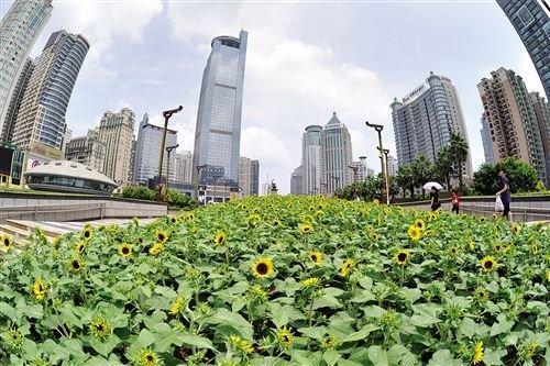 南宁2014年将会投入1950万元打造