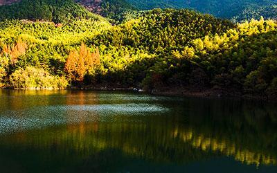 黄柏山森林公园图片