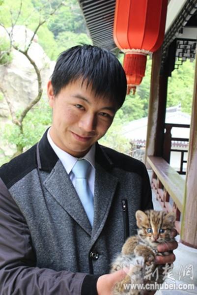 神农架首次发现国家二级保护动物豹猫(图)-中新网
