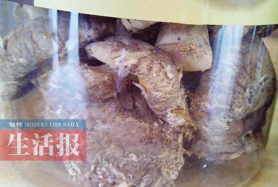 男子在超市买到长虫干香菇 投诉半年仍在卖(图)
