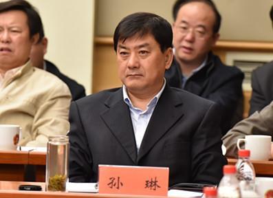 陕西省委网信办主任孙琳
