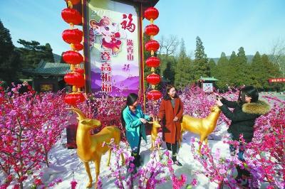 香山春节举办登高祈福会 三只金羊将登香炉峰(图)