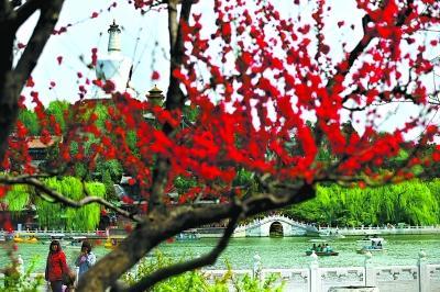 北京市属11家公园清明期间迎客190万
