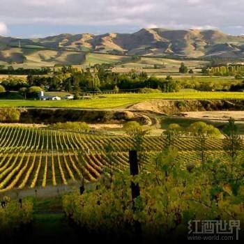 新西兰长相思欠缺或作用亚洲葡萄酒商场