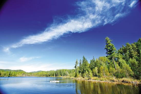 伊春市五营国家森林公园