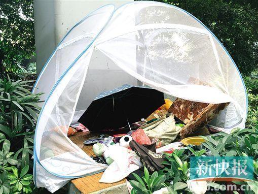 小鱼的蚊帐堆放着布娃娃等物品。