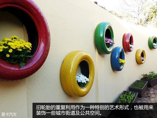 幼儿园轮胎种植植物角