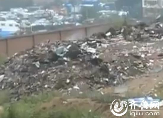 社区左近的废物沉积如山。(视频截图)