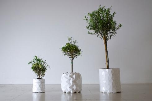 和花草一起长大的花盆 你见过么?