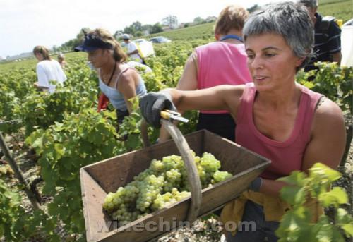 全球十大葡萄酒旅游目的地揭晓