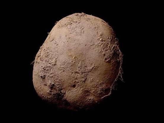 有钱任性!欧洲富商花100万欧元买一张土豆照片
