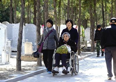 昨日,八宝山人民公墓,坐着轮椅前来扫墓的市民。