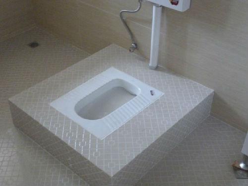 日媒关注中国-厕所革命--如厕情况让外国旅客很苦楚_大香蕉新闻乐点彩票大发不时彩
