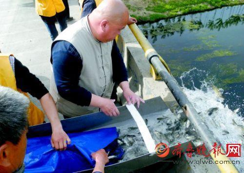 观察河蚌组织结构
