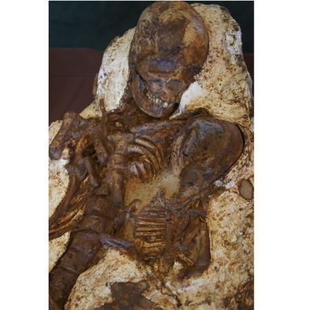 台中出土最古白叟类化石 母抱婴儿密意注视5000年