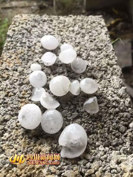 四川宜宾突降汤圆大小冰雹 砸坏大片农作物(图)