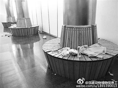 """""""每次博物馆里只要来熊孩子,就好不了,破坏力很强。""""前日,科普大V""""@国家动物博物馆员工"""" 发微博抱怨来参观的中小学生缺乏基本礼仪,并点名批评北京一所小学,还放上当日该校学生离开博物馆后垃圾遍地的照片为证。此文一出引发哗然。被点名的小学昨天公开道歉,并对学生召开主题教育活动。"""