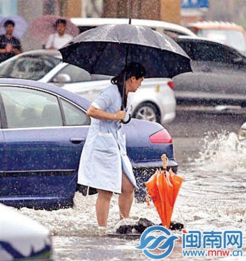 """女子冒雨为无盖窨井插伞示警 被赞""""雨中美人"""""""