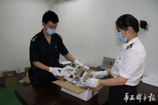 """成都海关在入境国际邮件中首次查获""""巨型蟑螂"""""""