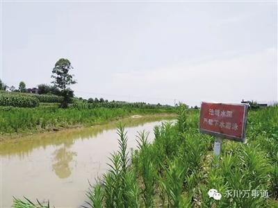重庆永川10岁双胞胎姐妹在村中水塘里游泳溺亡
