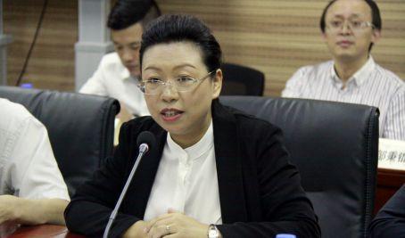 国际都会诊断暨中欧乡镇化协作缔造研究会在北京举行