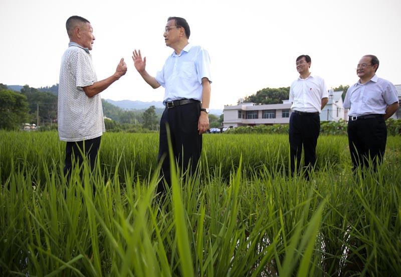 8月22日,李克强在江西瑞金考察途中,随机向沿途多位农民了解今年稻谷收购价格和农民种粮收入状况。