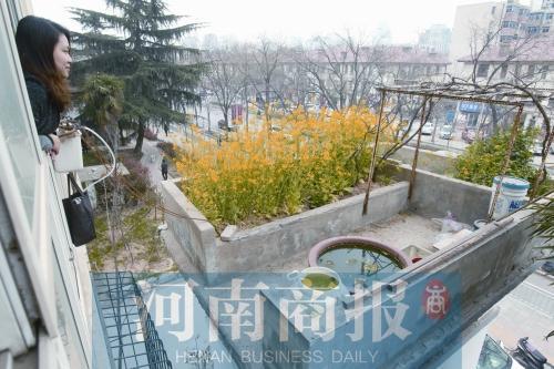 """郑州市民楼顶上建""""空中花园"""" 有花草有水果"""