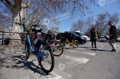 p48-2北海公园大门附近,违规停靠在斑马线上的共享单车。