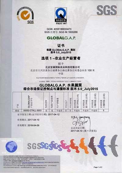 北京宏福国际农业科技有限公司获得GLOBAL G.A.P。认证
