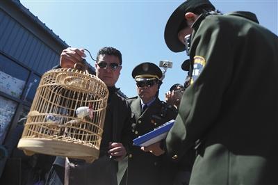 嫌犯在鸟市贩卖野生鸟 三轮车上藏十多个鸟笼