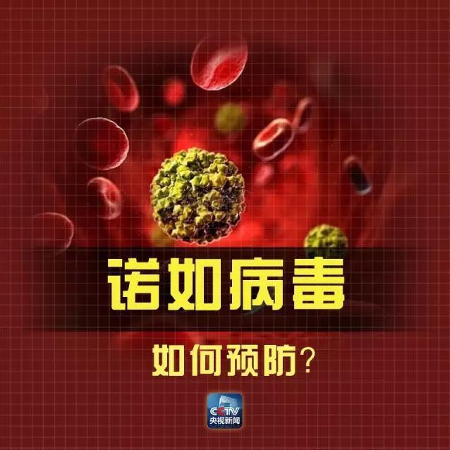 上海一小学发生学生集体呕吐事件 多人检出诺如病毒