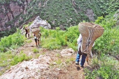 背沙工背200斤砂石走在悬崖山野:为孩子苦累不算啥