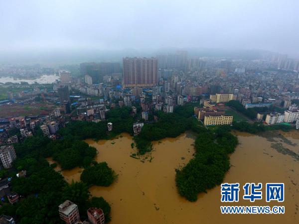 广西藤县洪涝重灾区见闻:全力抢险 减少各类损失