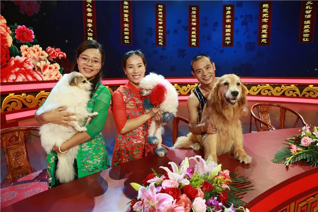 《中国好家庭》关注快乐陪伴 三只小狗现身获赞可爱