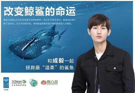 成毅为拯救鲸鲨发声 呼吁拒绝捕捞关爱濒危物种