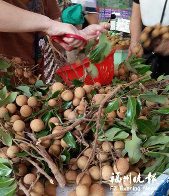 白露吃龙眼:传统习俗让商家销量大增 有店日售70吨