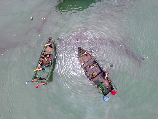海洋生态保护警钟长鸣:全球海洋治理中国在行动