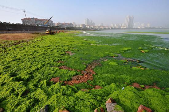 全球海洋治理中国在行动